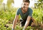 Comment choisir un bon paysagiste